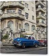 Havana Beauty Canvas Print