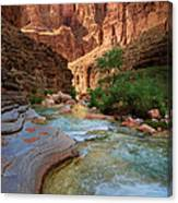 Havasu Creek Canvas Print