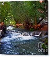 Havasu Creek Canvas Print