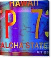 Hawaii Aloha State Canvas Print