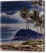 Hawaii Big Island Coastline V3 Canvas Print
