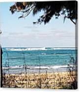Hawaiian Beach Canvas Print