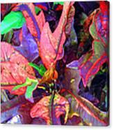 Hawaiian Foliage Canvas Print