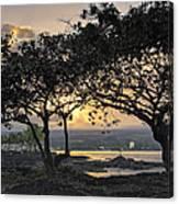 Hawaiian Nights Canvas Print