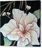 Hawaiian Pua Canvas Print