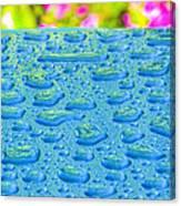 Hawaiian Rain Canvas Print