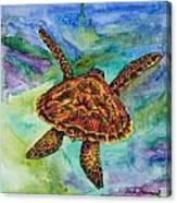Hawaiian Sea Turtle Canvas Print