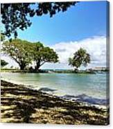 Hawaiian Landscape 1 Canvas Print
