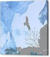 Hawk In Flight 1 Canvas Print