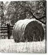 Hay Bale In A Farm Field Canvas Print