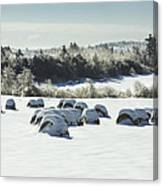Hay Bales Covered With Snow And Ice In Maine Canvas Print