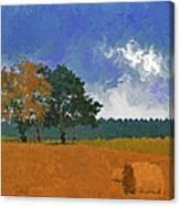 Hay Bales Canvas Print