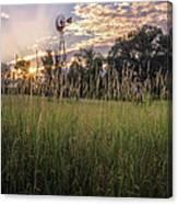 Hay Field Sunset Canvas Print