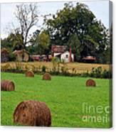 Hay From North Carolina Canvas Print
