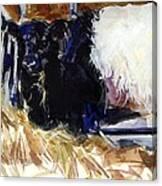Hay Hay Canvas Print