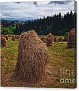 Hay In Stacks In Tatra Mountains Poland Canvas Print
