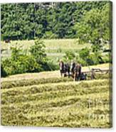Hay Season Canvas Print