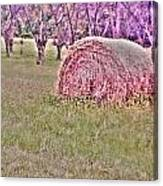 Hay Stack Canvas Print