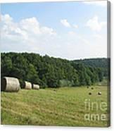 Haymaking Season Canvas Print