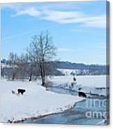 Hays Creek Winter Canvas Print