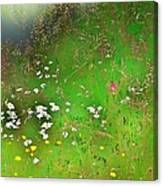 Hazy Meadow Abstract Canvas Print
