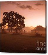 Hazy Morn Canvas Print