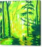 Hazy Sunny Forest Canvas Print