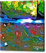 Hcbyb 104 Canvas Print