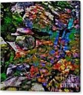 Hcbyb 119 Canvas Print