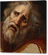Head Of Laocoon Canvas Print