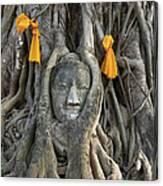 Head Of The Sand Stone Buddha Image Canvas Print