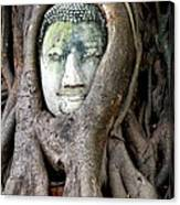 Head Of The Sandstone Buddha Canvas Print