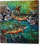 Heading Upstream Canvas Print