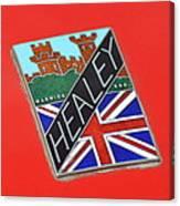 Healey Silverstone D Type Canvas Print