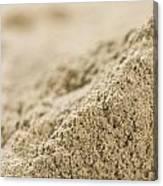 Heap Of Powdered Sage Canvas Print