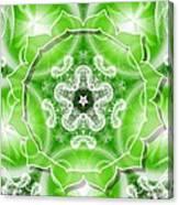 Heart Chakra Venus Canvas Print