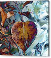 Heart On My Leaves Canvas Print