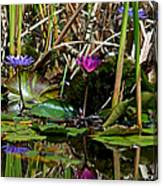 Heat Of The Afternoon - Down At The Lily Pond Iv Canvas Print
