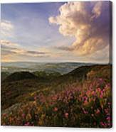 Heather Sunset Canvas Print