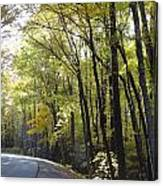 Heavenly Highway Canvas Print