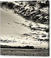 Heavenly Summer Sky Canvas Print