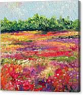 Heaven's Breath Canvas Print