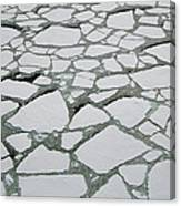 Heavy Pack Ice Terre Adelie Land Canvas Print