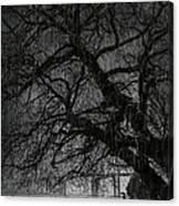 Heavy Rain Canvas Print