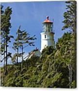 Heceta Head Lighthouse 1 B Canvas Print