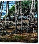 Heiau Wailua River Canvas Print