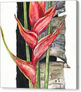 Heliconia 01 Elena Yakubovich Canvas Print