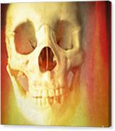 Hell Fire Canvas Print