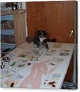 Helper Canvas Print