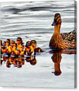 Hen And Gaggle Canvas Print
